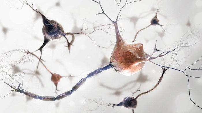 Рассеянный склероз: люди с оголенными нервами